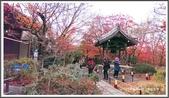 2015日本京阪自由行:2015京阪自由行手機版Day3 30