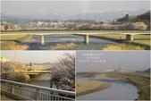 2014北陸櫻花紀行篇:2014北陸櫻花紀行篇D5062