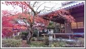 2015日本京阪自由行:2015京阪自由行手機版Day3 40