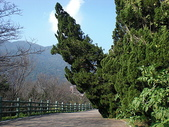 (yahoo)陽明山公園。小油坑。擎天崗。冷水坑:CIMG4915.JPG