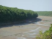 (yahoo)竹圍。紅樹林。淡水:竹圍至淡水散步11