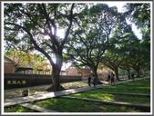 (yahoo)台中(大坑。東豐綠廊。台中公園。高美濕地):東海大學