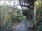 (yahoo)陽明山公園。小油坑。擎天崗。冷水坑:P1460016.JPG