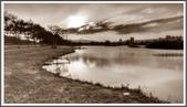 北北基之旅:新海濕地_191215_0007.jpg