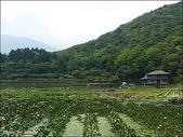 (yahoo)竹子湖:竹子湖