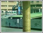 (yahoo)台中(大坑。東豐綠廊。台中公園。高美濕地):P1890316.JPG