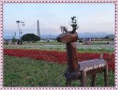 (yahoo)疏洪荷花公園。幸福水漾公園。微風運河:幸福水漾公園01