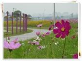 (yahoo)疏洪荷花公園。幸福水漾公園。微風運河:P1430361.JPG