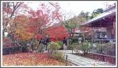 2015日本京阪自由行:2015京阪自由行手機版Day3 31