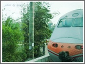 (yahoo)台中(大坑。東豐綠廊。台中公園。高美濕地):P1890314.JPG