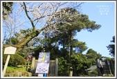 2014北陸櫻花紀行篇:2014北陸櫻花紀行篇D5045